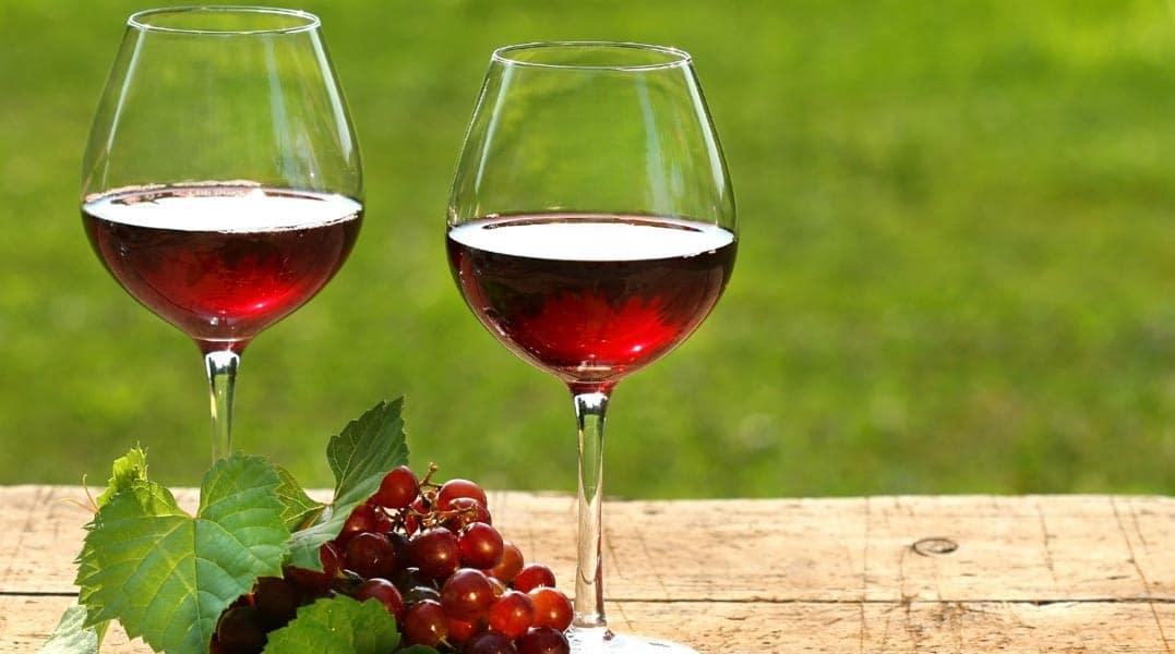 Marco Zullo M5S lambrusco vitigno