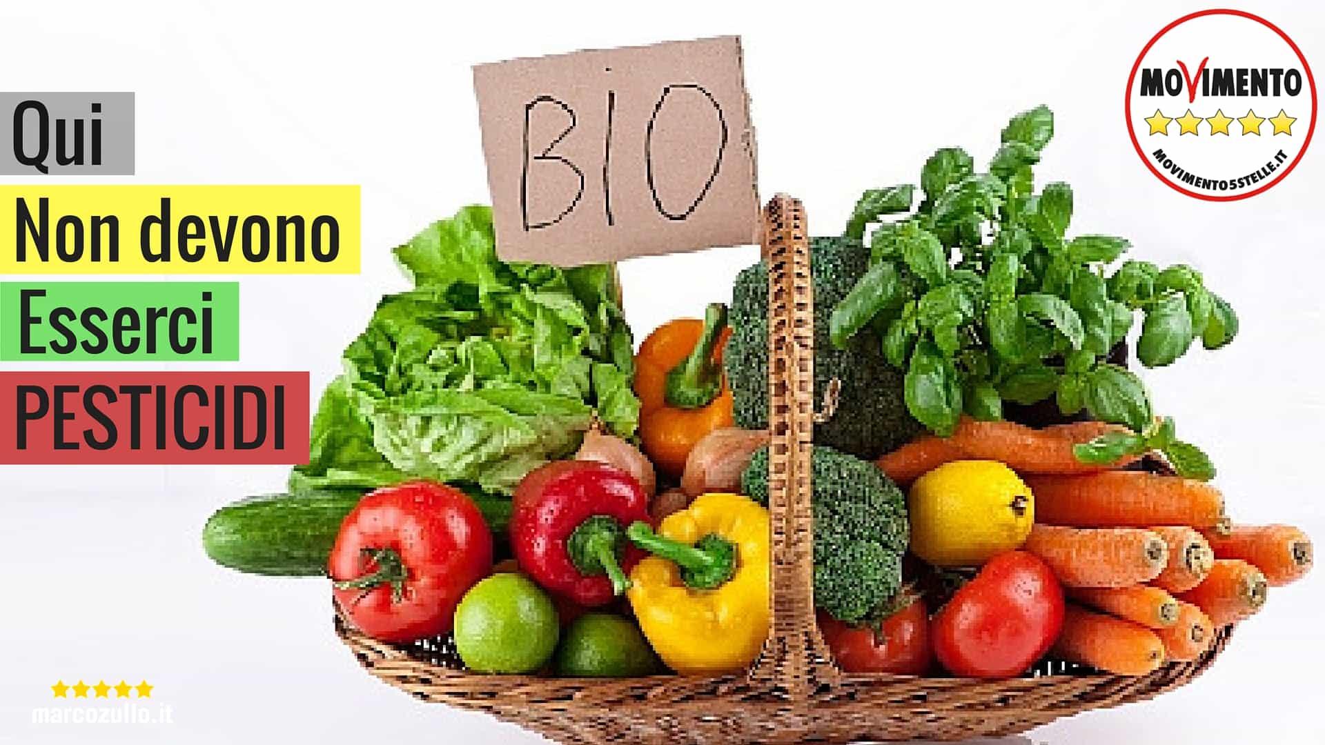 Marco Zullo M5S Europa biologico agricoltura pesticidi