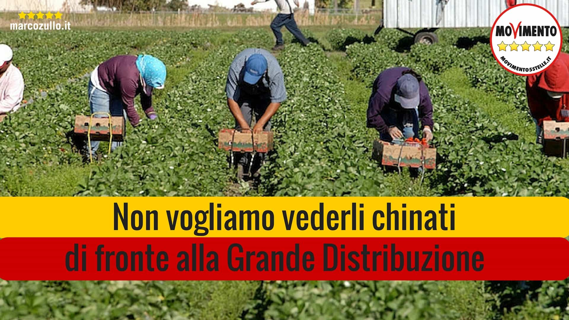 Marco Zullo M5S Europa pratiche commerciali sleali agricoltura grande distribuzione