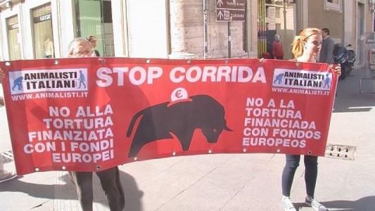 Marco Zullo M5S Europa stop corride