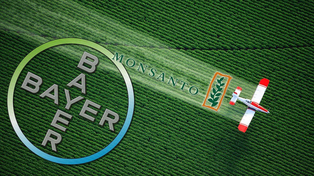 Marco Zullo M5S Europa bayer monsanto pesticidi ogm glifosato