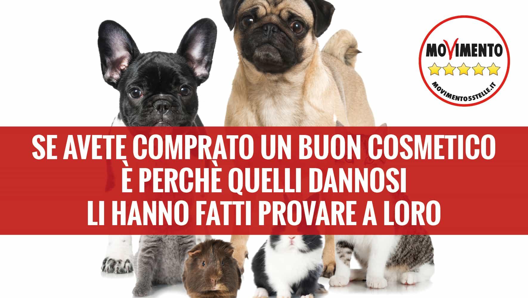 Marco Zullo M5S Europa tutela animali cosmetici