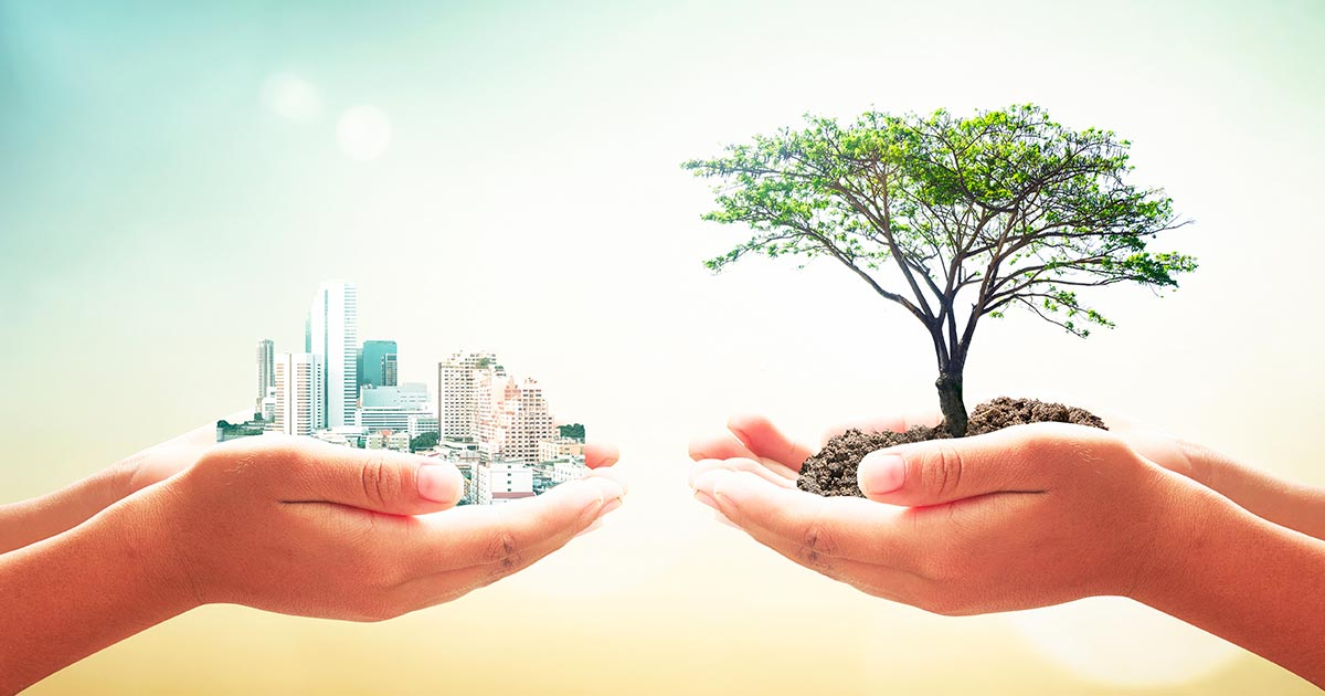 sostenibilita movimento 5 stelle